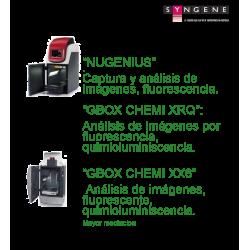 Syngene. Sistemas automatizados de documentación de geles