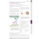 Noviembre 2016 . Empaquetamiento de Insulina en celulas in vivo New homo-FRET FP