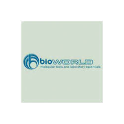Glycine max Lectin (SBA) - MagneZoom™ - Ref: BW-20162104-1