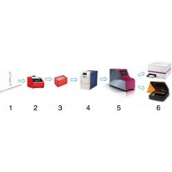Detección directa ultrarapida de ARN del SARS-CoV-2 desde medio de transporte Amies mediante PCR de punto final .