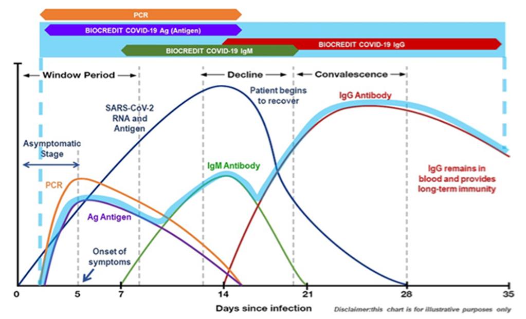Grafica Test Antigenos - Anticuerpos